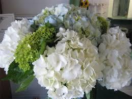 flower delivery ta flower delivery ta fl the best flower in 2017