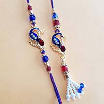 send rakhi within usa send rakhi to chicago online rakhi delivery in chicago ferns n