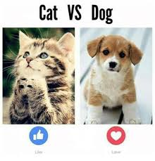 Funny Cat And Dog Memes - 16 funny cats and dogs memes 02 is so true 国际 蛋蛋赞