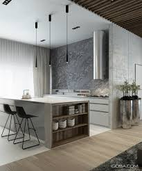 The Kitchen Design by Sharp Contrast Defines The Kitchen Color Form And Materials