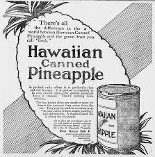 pineapple upside down cake revolutionary pie