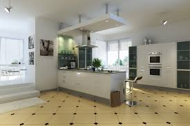 L Shaped Modular Kitchen Designs by Tag For Indian Modular Kitchen Design Ideas Nanilumi