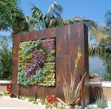 Wall Garden Ideas by Cactus Garden Ideas Landscape Industrial With Different