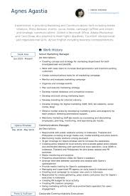 resume exles for executives senior marketing manager resume sles visualcv resume sles