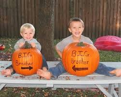 114 Best Halloween Images On Pinterest Costumes Halloween Stuff 114 Best Halloween Pregnancy Announcement Ideas Images On