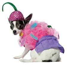 cupcake costume rasta imposta cupcake pet costume pet supplies