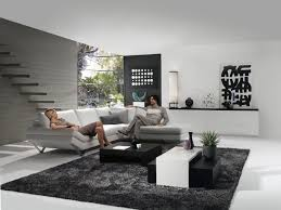 Modern Black Rug Living Room Fascinating Modern Black White Grey Living Room