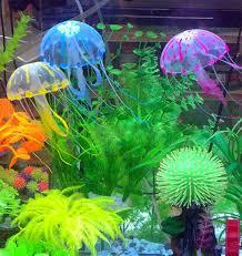 36 best fish tank ideas images on aquarium ideas fish