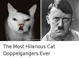 Most Funniest Memes Ever - 25 best memes about most hilarious most hilarious memes