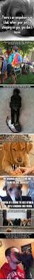 23 best small non shedding dogs images on pinterest non shedding