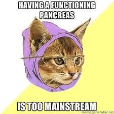 Diabetes Cat Meme - diabetes in cats