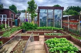 permaobserver permaculture technology and news blog
