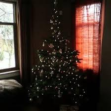 chubby u0026 tubby christmas trees closed 18 reviews christmas