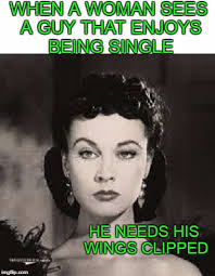 Single Woman Meme - when a woman sees a guy that enjoys being single he needs his wings