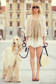 afghan hound in clothes i want a tall blonde dog to be my twin thebarktorialist com