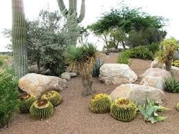 desert landscaping ideas u2013 bowhuntingsupershow com