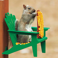 adirondack chair squirrel feeder enjoy hours of fun watching