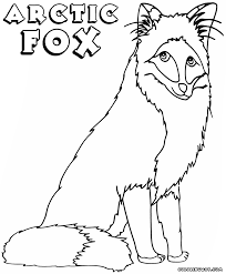 fox coloring pages coloring pages to download and print
