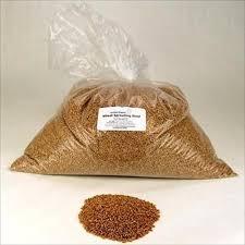 organic wheat seed 50 lb handy pantry brand grow