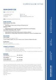 Best Professional Resume Templates Free Resume Template 89 Exciting Free Downloads Cv Download By