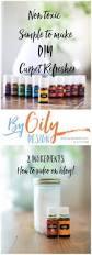best 20 homemade carpet powder ideas on pinterest diy glass