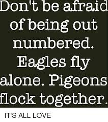 Together Alone Meme - don t be afraid of being out numbered eagles fly alone pigeons flock
