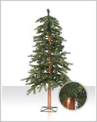redwood alpine christmas tree christmas tree market