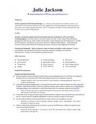monstercom resume templates resume businessanalyst writing services reviews