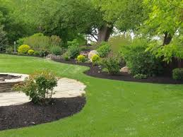 spring landscaping wny landscaper lawn maintenance lawn care company in wny