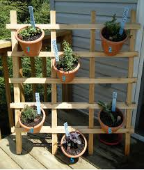Patio Herb Garden Ideas A And Three Pooches Diy Pinterest Inspired Patio