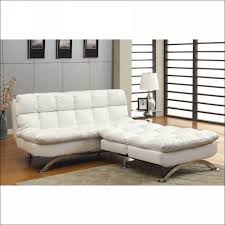 Futon Sofa Bed With Storage Furniture Marvelous Pull Out Futon Couch Futons That Look Like