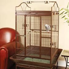 home interior bird cage bird cages petco amazing home interior design ideas by jimmy nemo