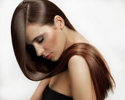 Chestnut Hair Color Pictures Chestnut Colored Hair Color 50 Photos U2014 All Shades