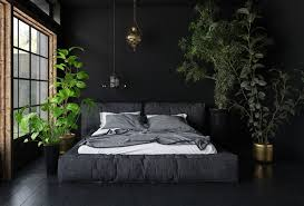 room with plants 15 soothing bedroom plants to help you sleep earth911 com