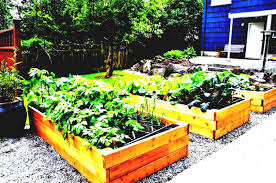 planning a garden layout don t let limited growing vegetable garden layout plans and