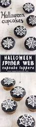 best 25 spider cupcakes ideas on pinterest spooky treats