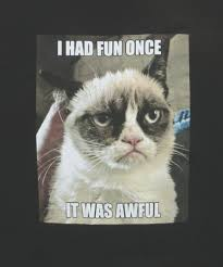Grumpy Cat Meme I Had Fun Once - from i had fun once grumpy cat quotes