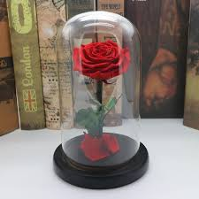 rose in glass asypets forever rose flower immortal fresh rose in glass as