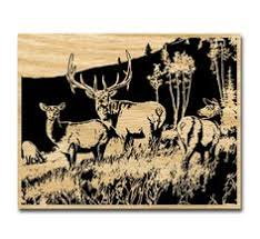 Wildlife Wood Burning Patterns Free by Scroll Saw Patterns Free Scroll Saw Patterns By Arpop Elk