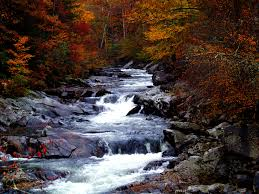Tennessee Landscapes images Cascading rapids landscape in great smoky mountains national park jpg