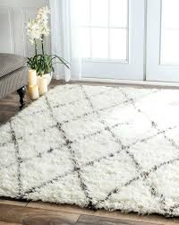 Outdoor Shag Rug New 5 5 Outdoor Rug Startupinpa