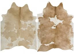 Laminate Floor Rugs Decorating Calf Hide Rug And White Cowhide Rug At Living Room