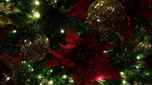 mlewallpapers com maroon and gold christmas tree