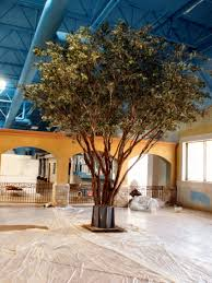 large artificial trees like specimen make be leaves