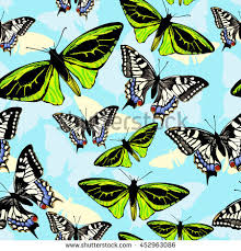 seamless vector creative pattern butterfly textile stock vector