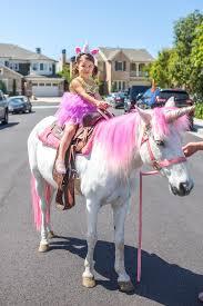 Horse Birthday Decorations Unicorn Rides From A Magical Unicorn Birthday Party On Kara U0027s