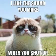 Mean Cat Memes - funny mean cat memes image memes at relatably com
