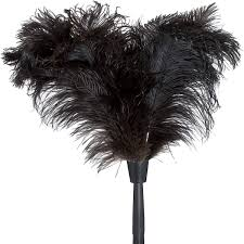 ostrich feather duster for telescoping utility pole