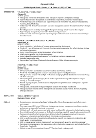 corporate resume exles corporate strategy resume sles velvet