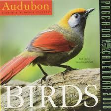 33 best plants for birds amazon com audubon birds page a day calendar 2018 9781523500741